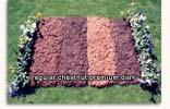 mulch color comparison